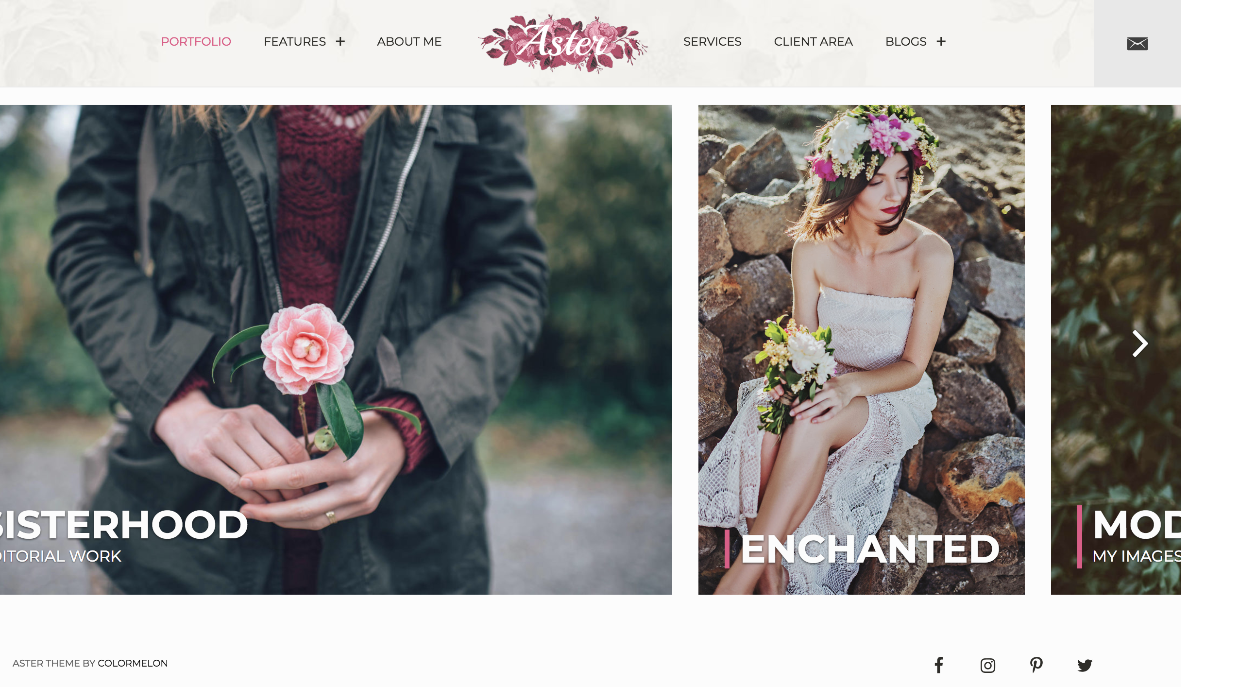 Aster – Photography portfolio theme.png