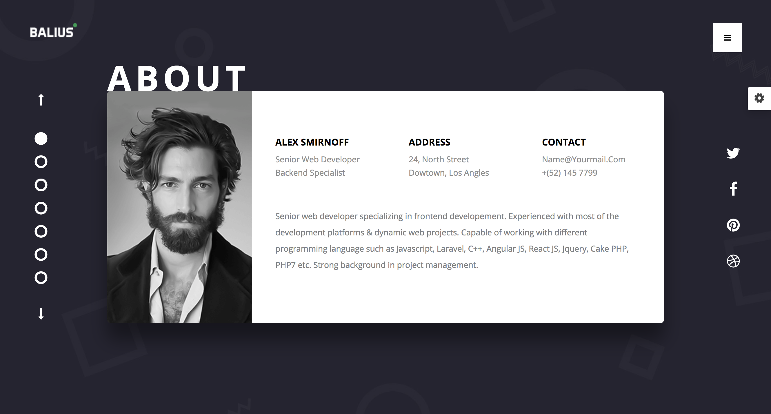 Balius - Resume and vCard WordPress Theme.png