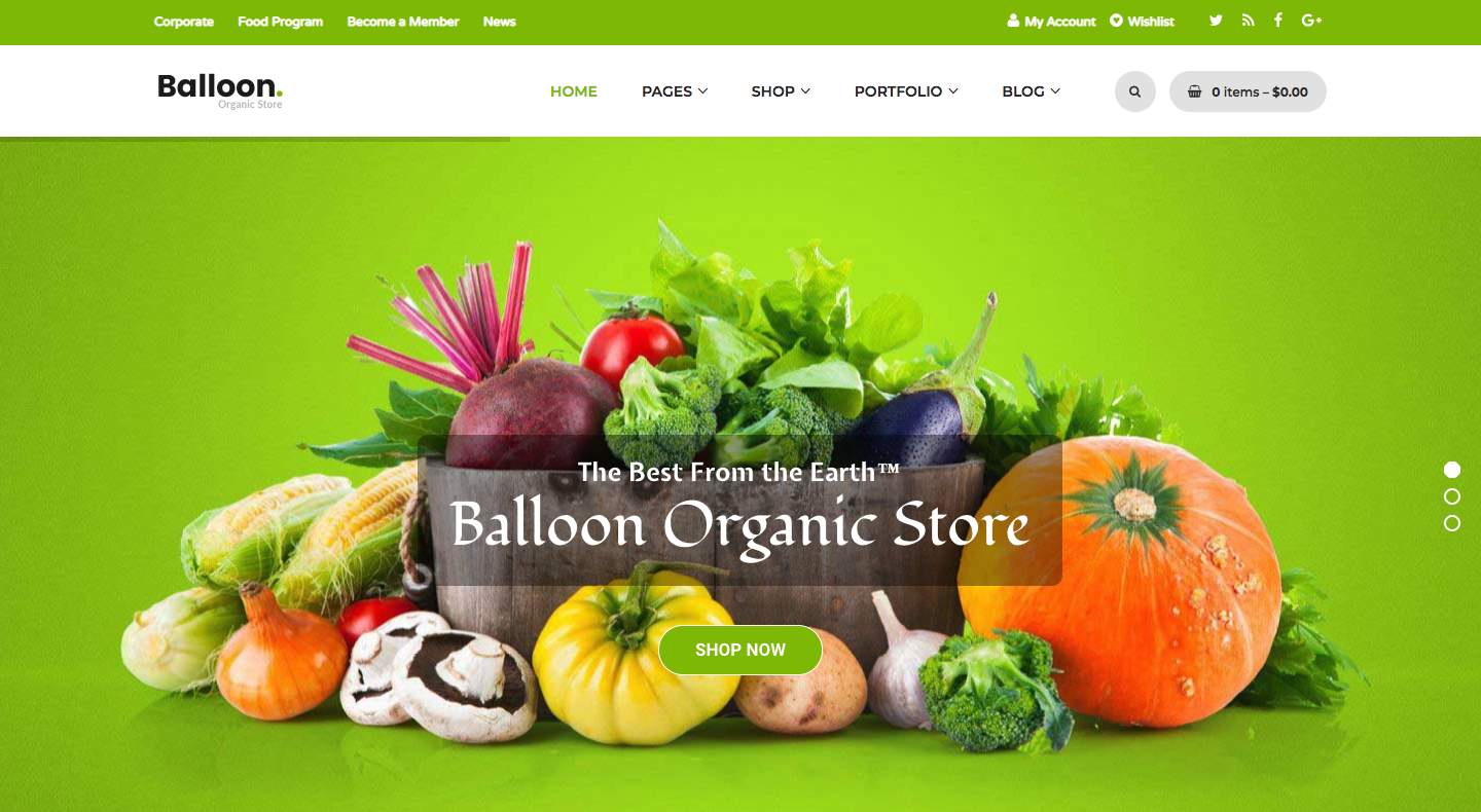 Balloon | Organic Farm & Food Business WordPress Themes.png