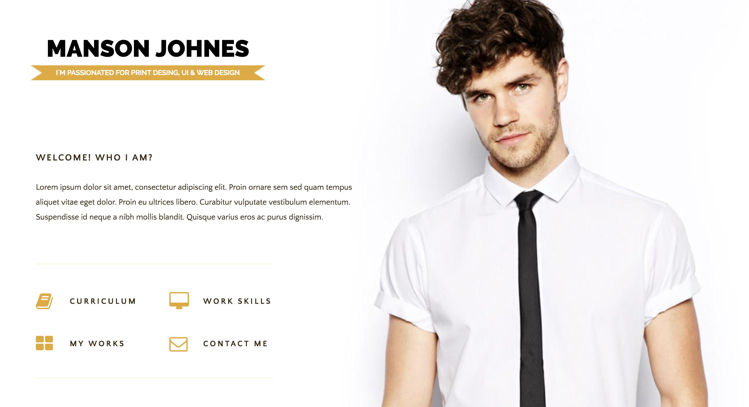 Hireme - Responsive Resume WordPress Theme.png