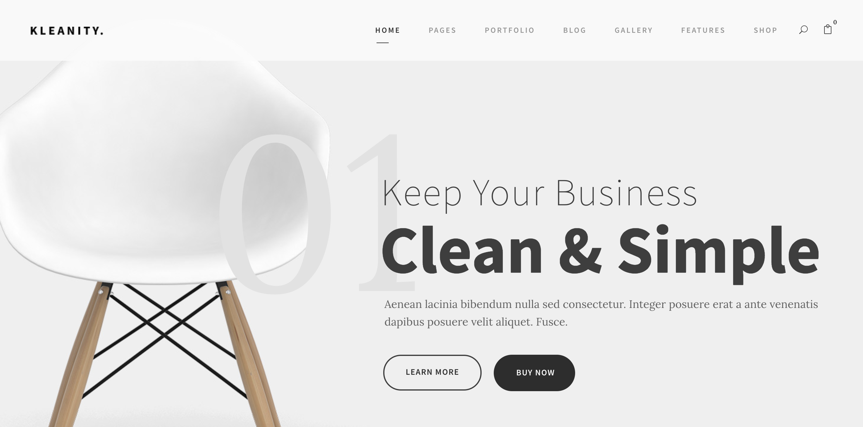 Kleanity – Minimal Creative WordPress Theme – Just another WordPress site.png