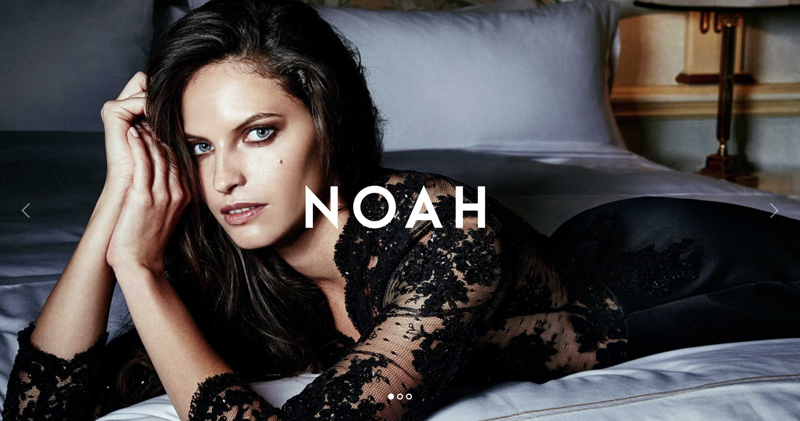 NOAH - A Witty Photography WordPress Theme.png