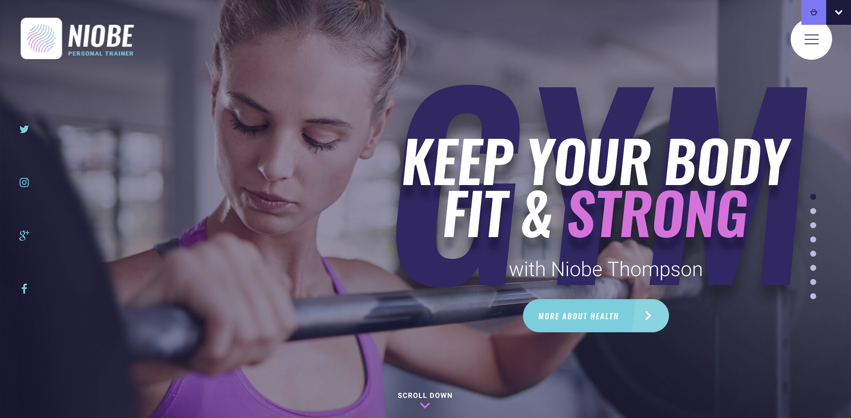Niobe - Gym Trainer Nutrition Coach WP Theme.png