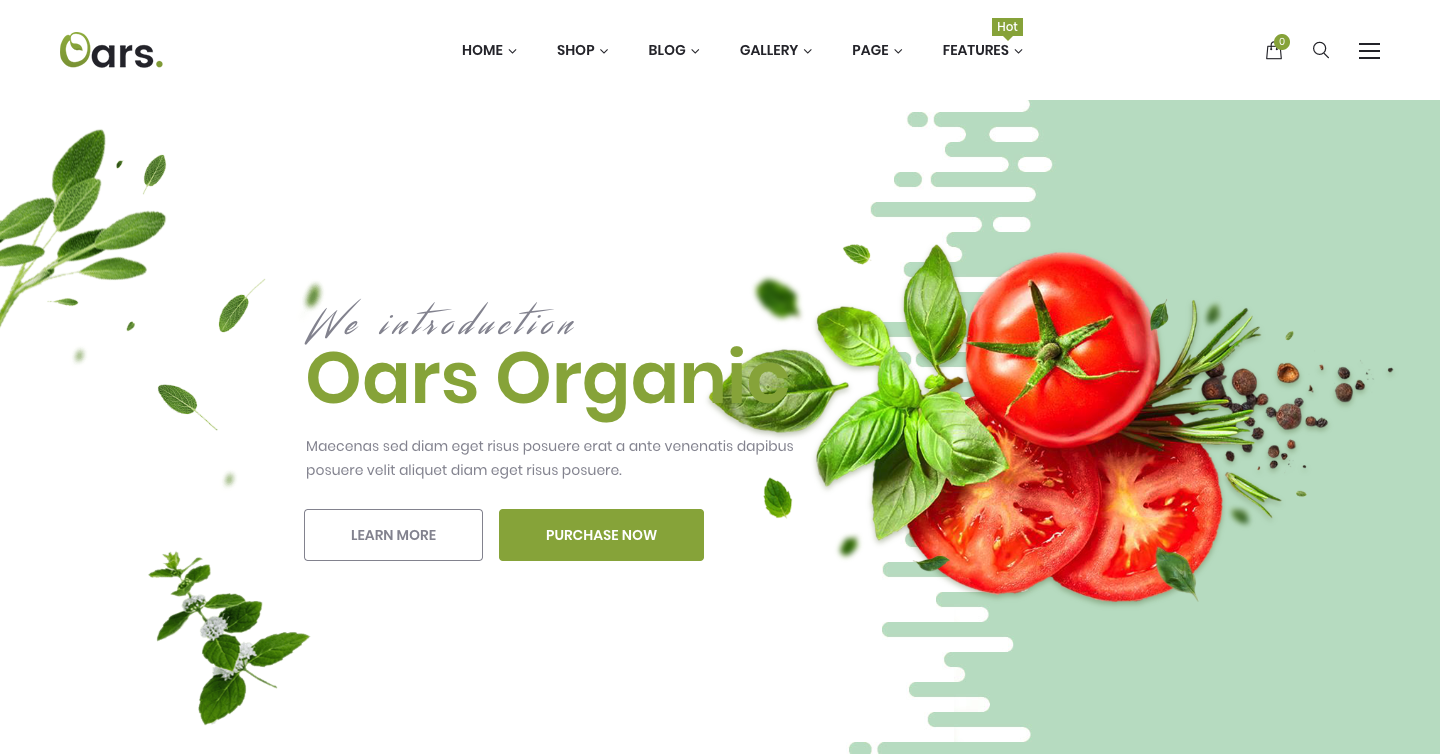 Oars - Creative Organic Store & Fresh Food WordPress Theme.png