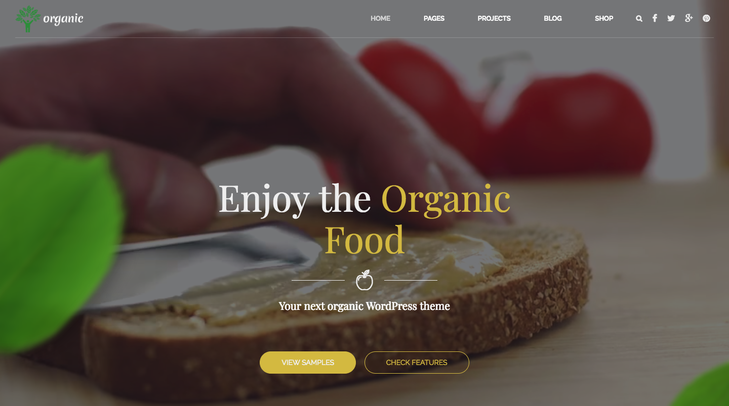 Organic Food - Nutritionist & Food WordPress Theme.png