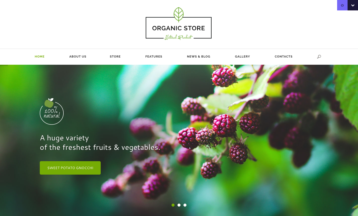 Organic Store - Organic & Eco Products WordPress Theme.png