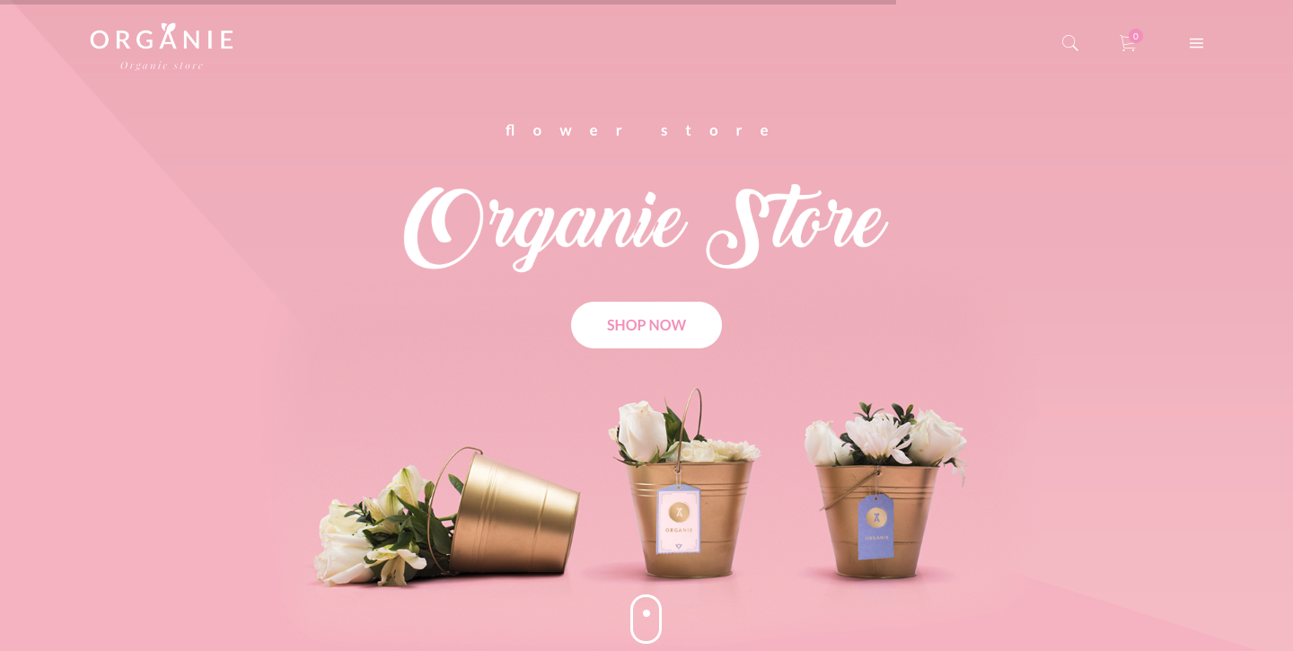 Organie - An Organic Store, Farm, Cake and Flower Shop WooCommerce Theme.png