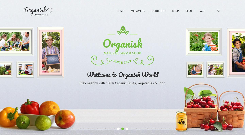 Organisk - Multipurpose Organic WooCommerce Theme.png