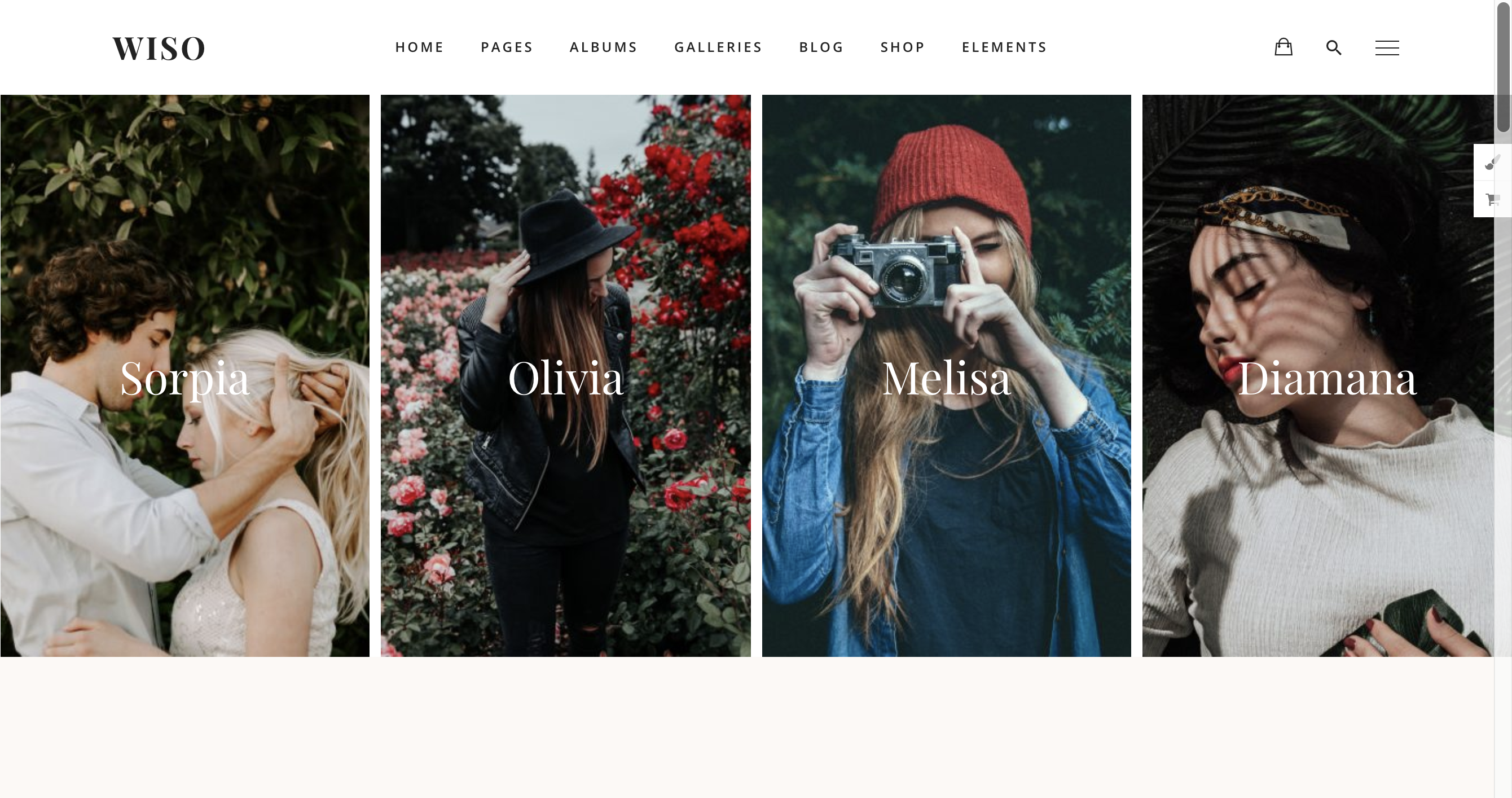 Photography WISO - Photography WordPress for photography.png