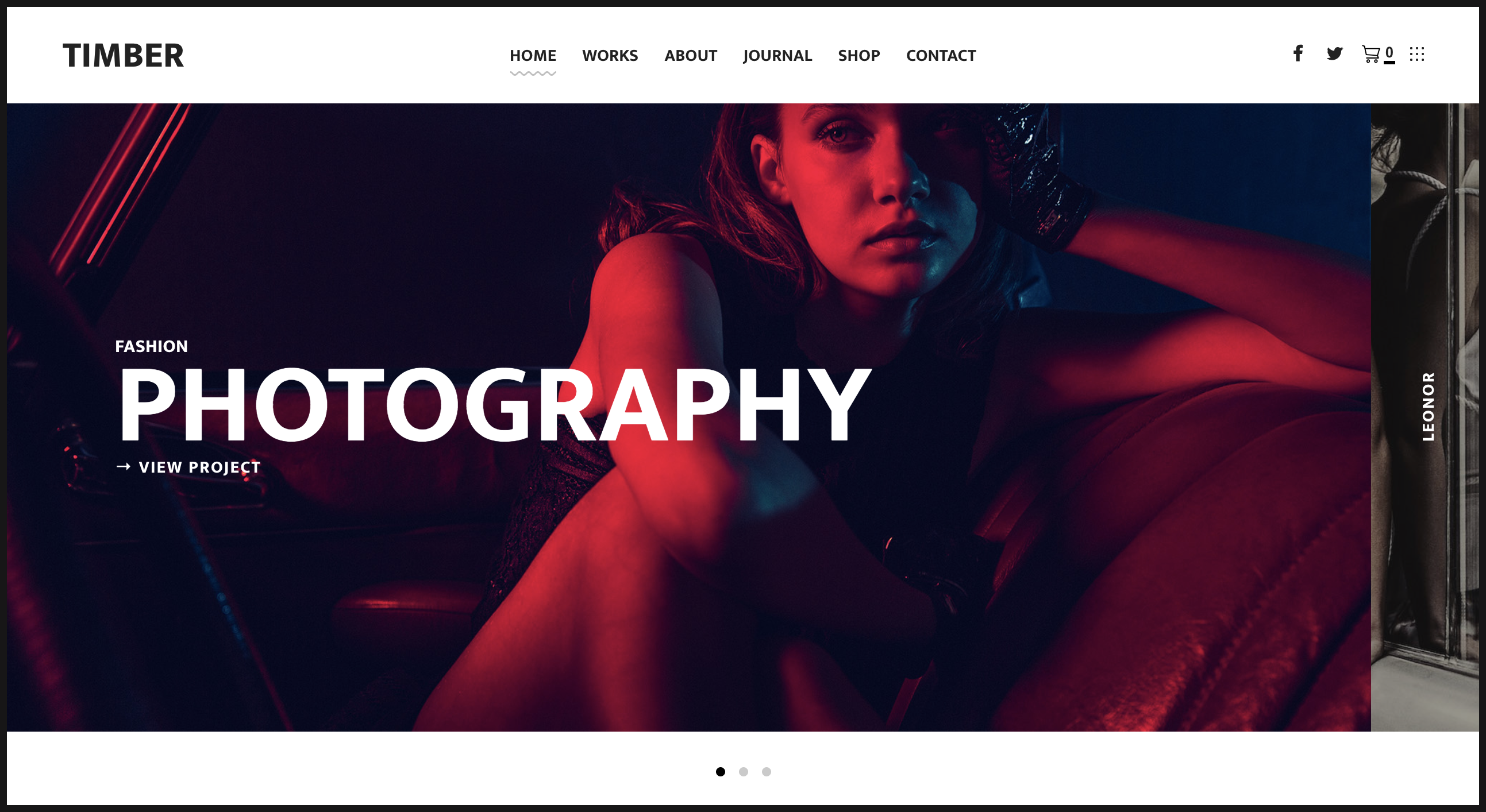 TIMBER – An Unusual Photography WordPress Theme.png