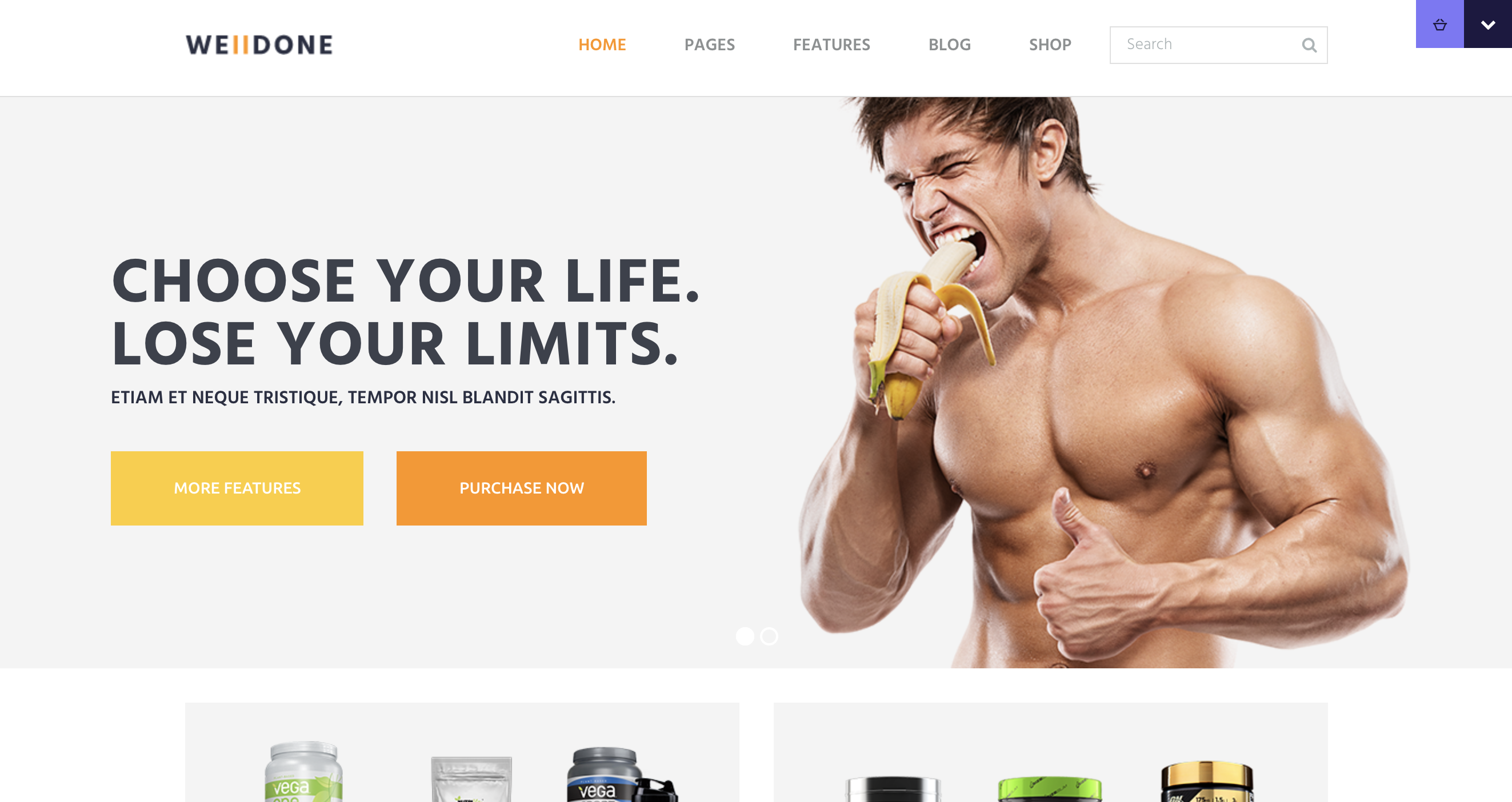 Welldone - Sports Fitness Supplements Store WordPress Theme.png