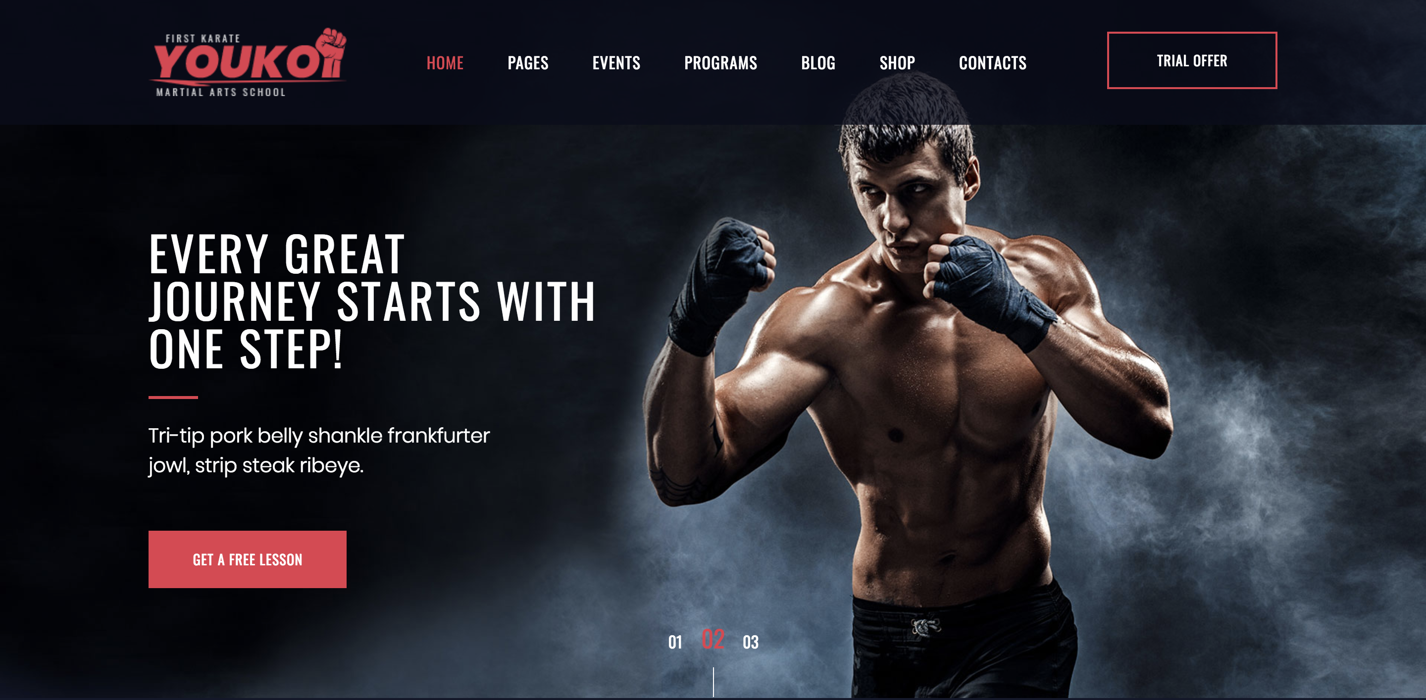 Youko - Martial Arts School WordPress Theme.png